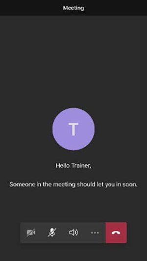 screenshot of a phone with the message: someone in the meeting should let you in soon.""