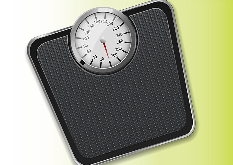 photo of scales